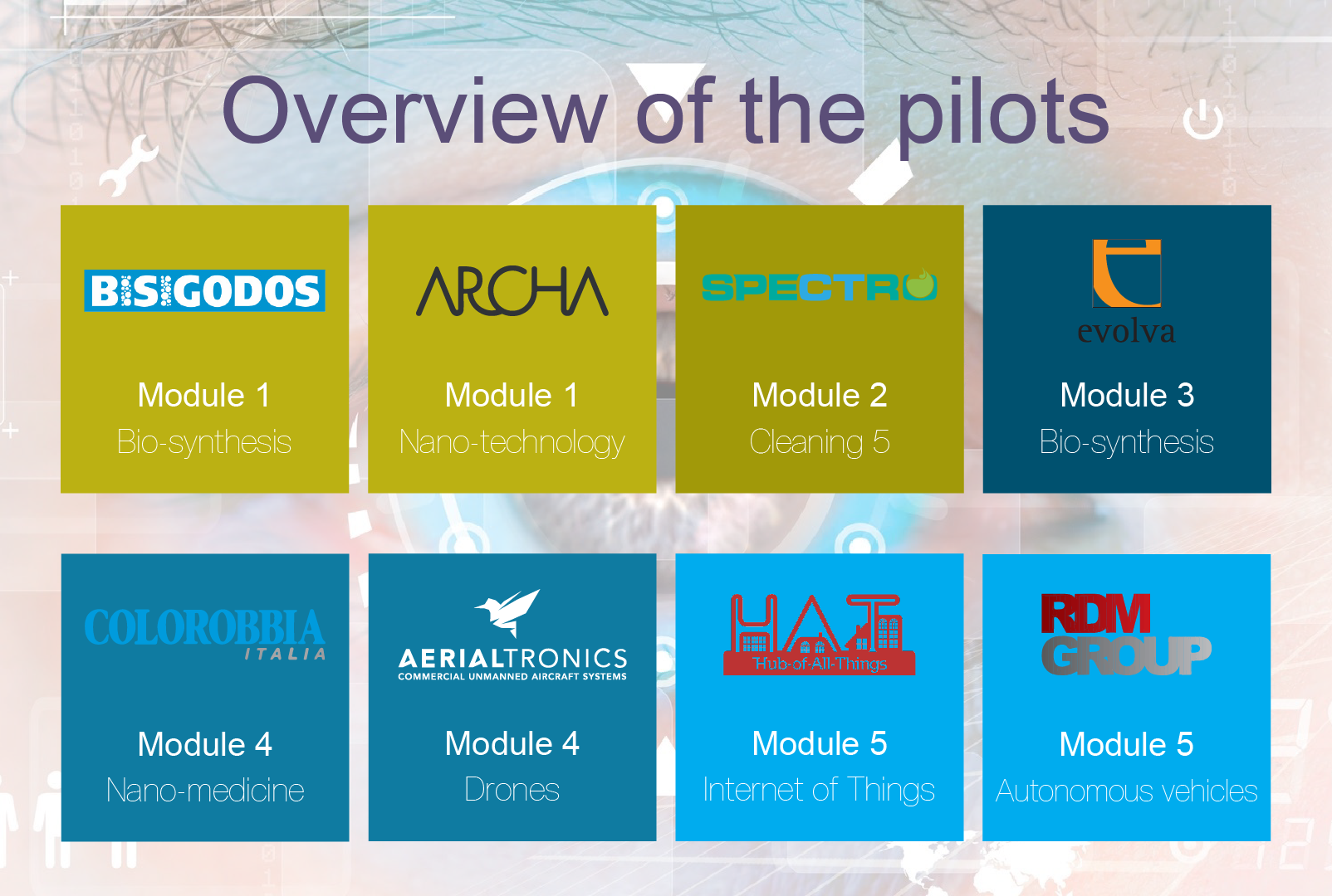 Overview_Pilots