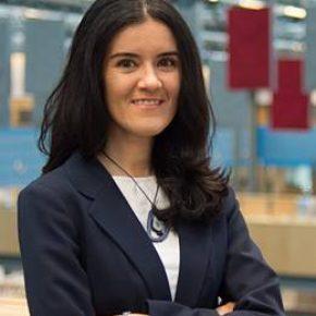Dr.ir. Laura Ramirez Elizondo